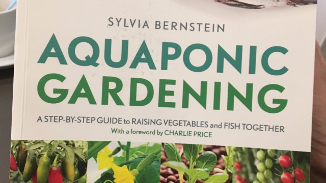 Evergem: Oogst binnenkort je eigen groenten in de bib