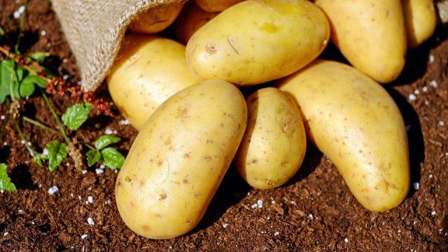Afhaalpunt Bio Groente- en fruitpakket De Lochting